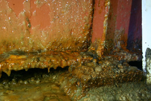 Corrosion and slime on floor beams in a crawlspace
