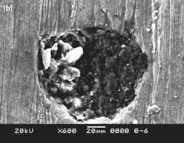 SEM of cavitation damage of injection piston