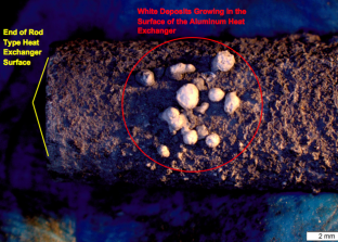 Top view of the rod-like surface showing a group of white deposits growing