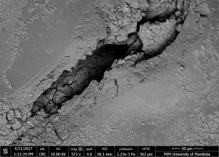 View of the Cavity beneath the 2-coat system indicating significant corrosion of the aluminum (scanning electron microscope)